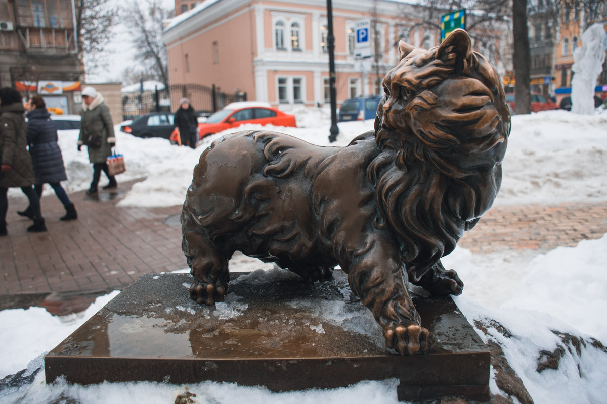 Памятник Коту Понтюше в Киеве в районе Золотых ворот