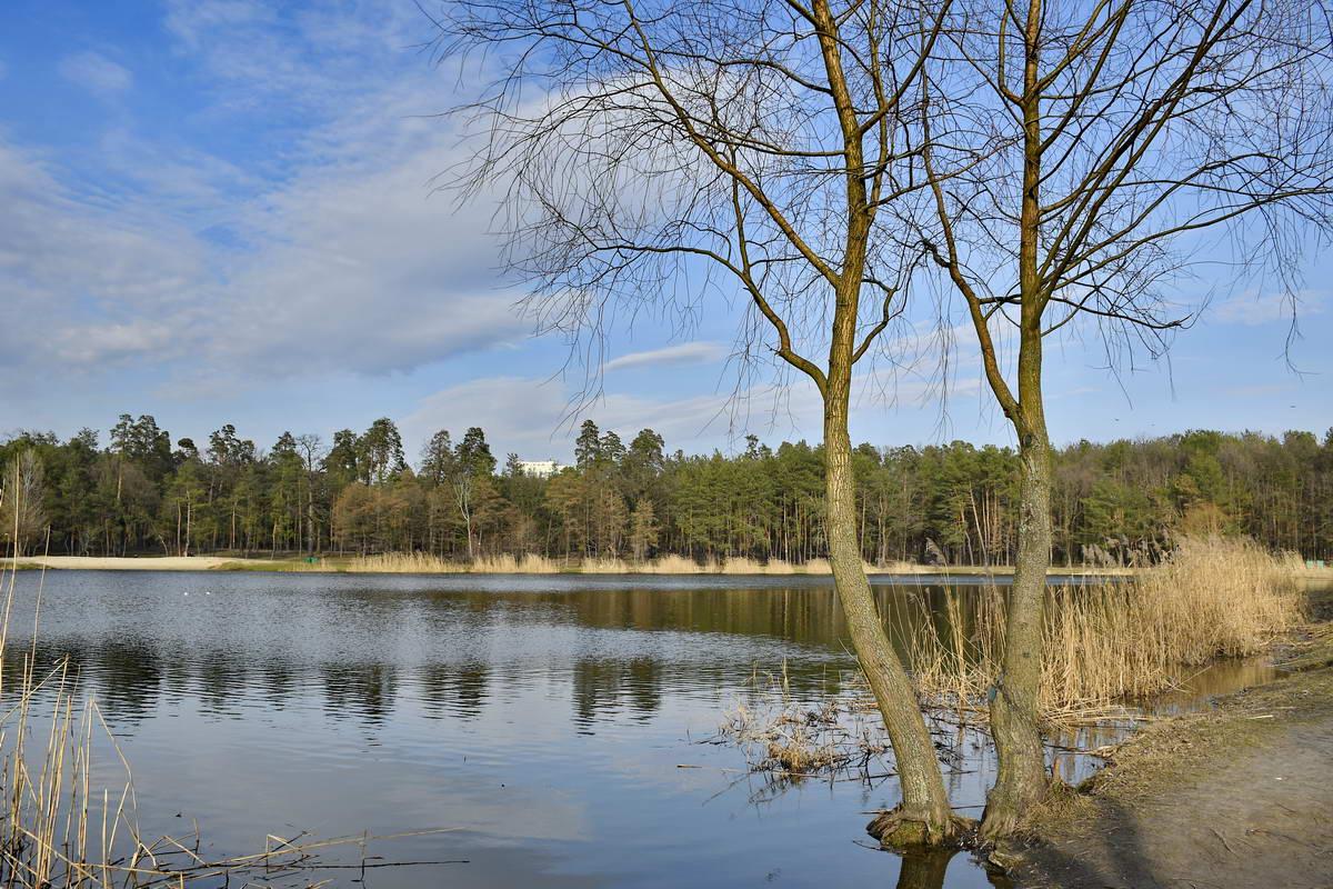 В реконструкцию парка планируют вложить46 255000 миллионов гривен