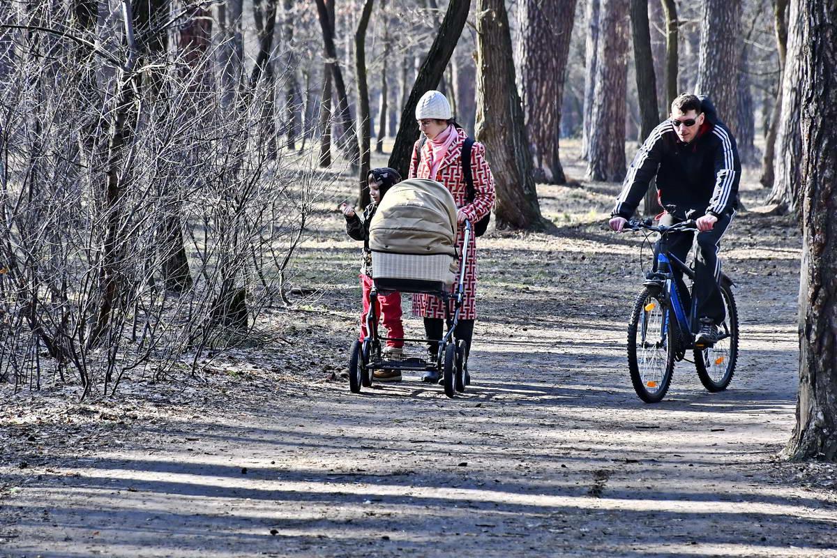 В парке приятно прогуляться с ребенком