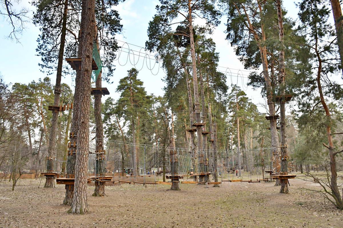 Веревочный парк ожидает посетителей