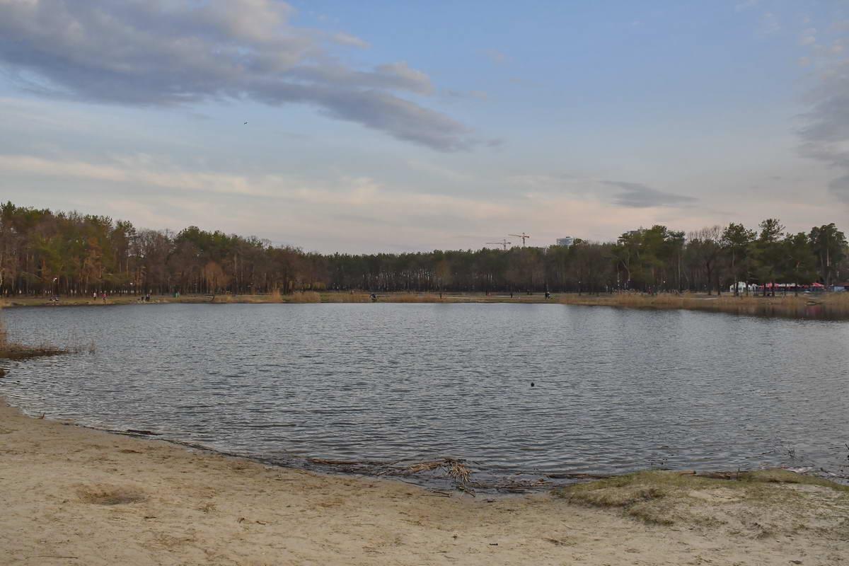 В рамках реконструкции а парке появятся много новых зеленых насаждений