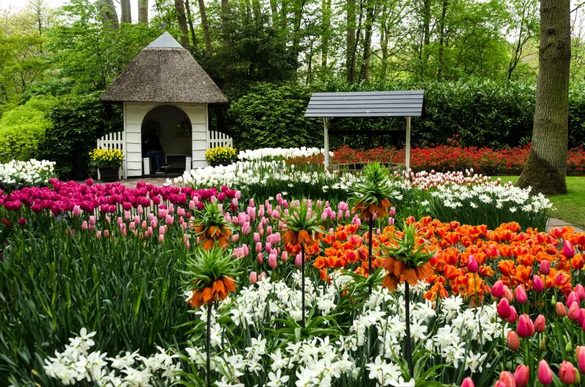 Создавать новые парки в Киеве, например, как цветочный Кекенхоф в Голландиии