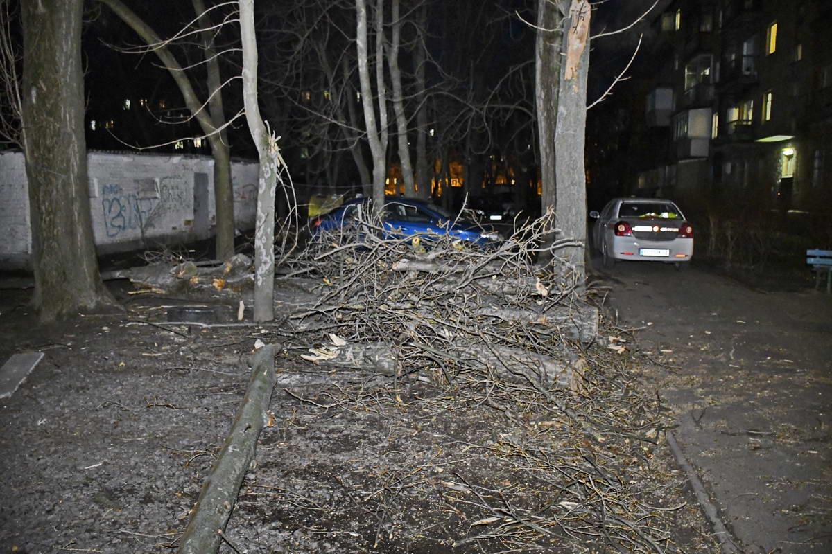 1 апреля сильный ветер в Киев привел к падению нескольких деревьев