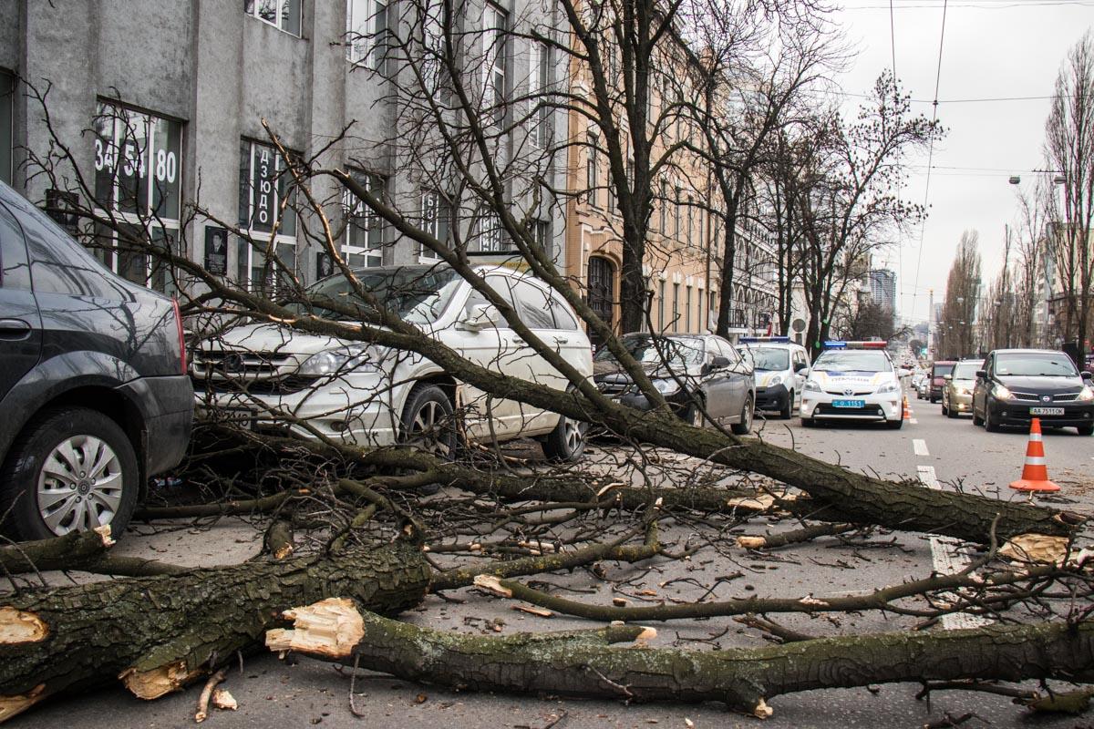 Автомобили были припаркованы вдоль дороги по бульвару Шевченко около дома номер 19