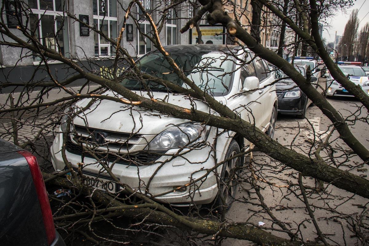 Автомобили получили повреждения – царапины и вмятины. Пострадавших нет