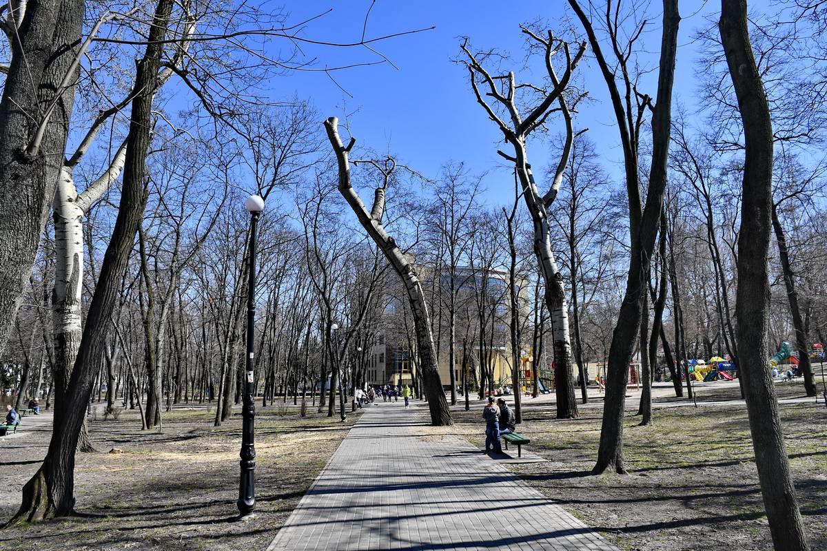 В парке планируют установитьбеседку, которая одновременно будет служить укрытием от дождя и солнца