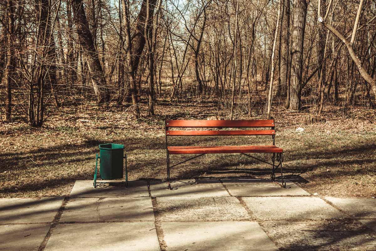 Урны пустые, а дорожки чистые - приятно посмотреть и погулять