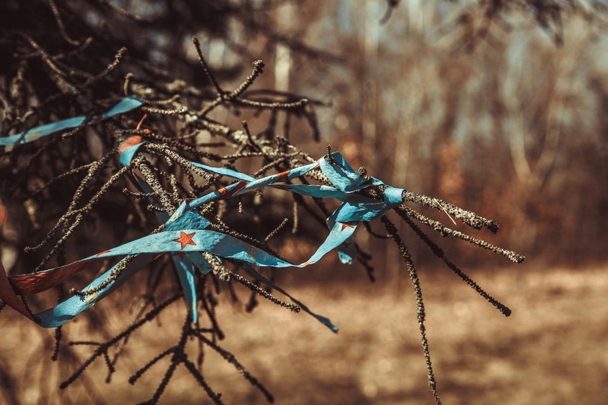 Тканевые повязки губительно воздействуют на деревья и кустарники