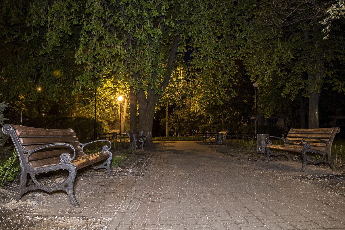 Уютный сквер тоже пустует ночью