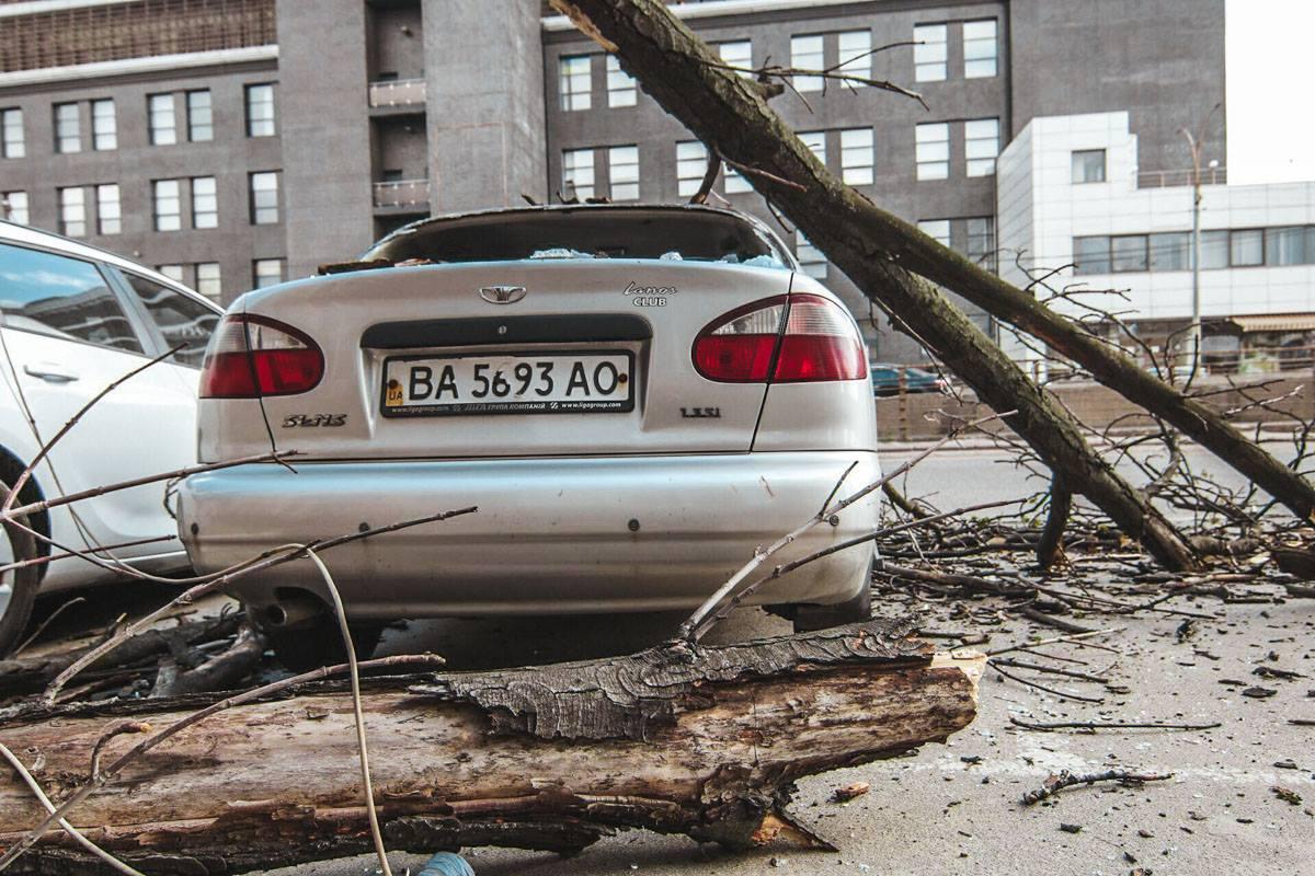В автомобиле на момент падения дерева никого не было, пострадавших нет
