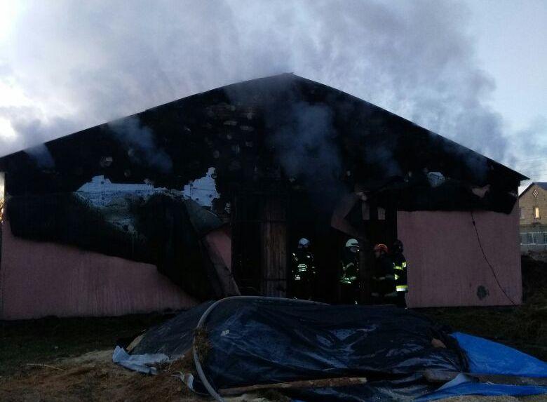 Под Киевом сгорела конюшня