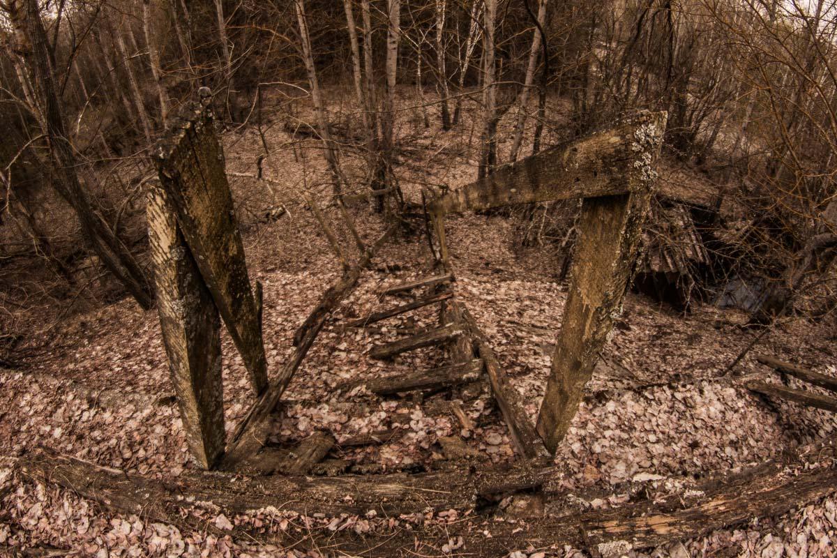 Многие зараженные растения уже давно погребены в землю