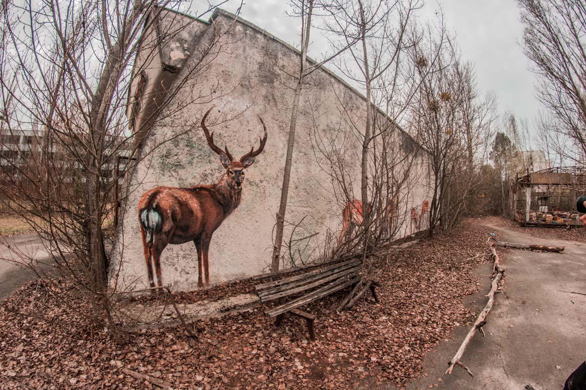 Природа все равно возьмет свое