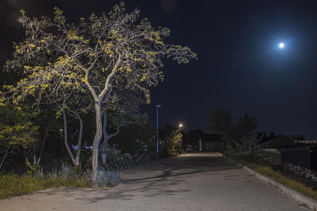 Безлюдная набережная под покровом луны