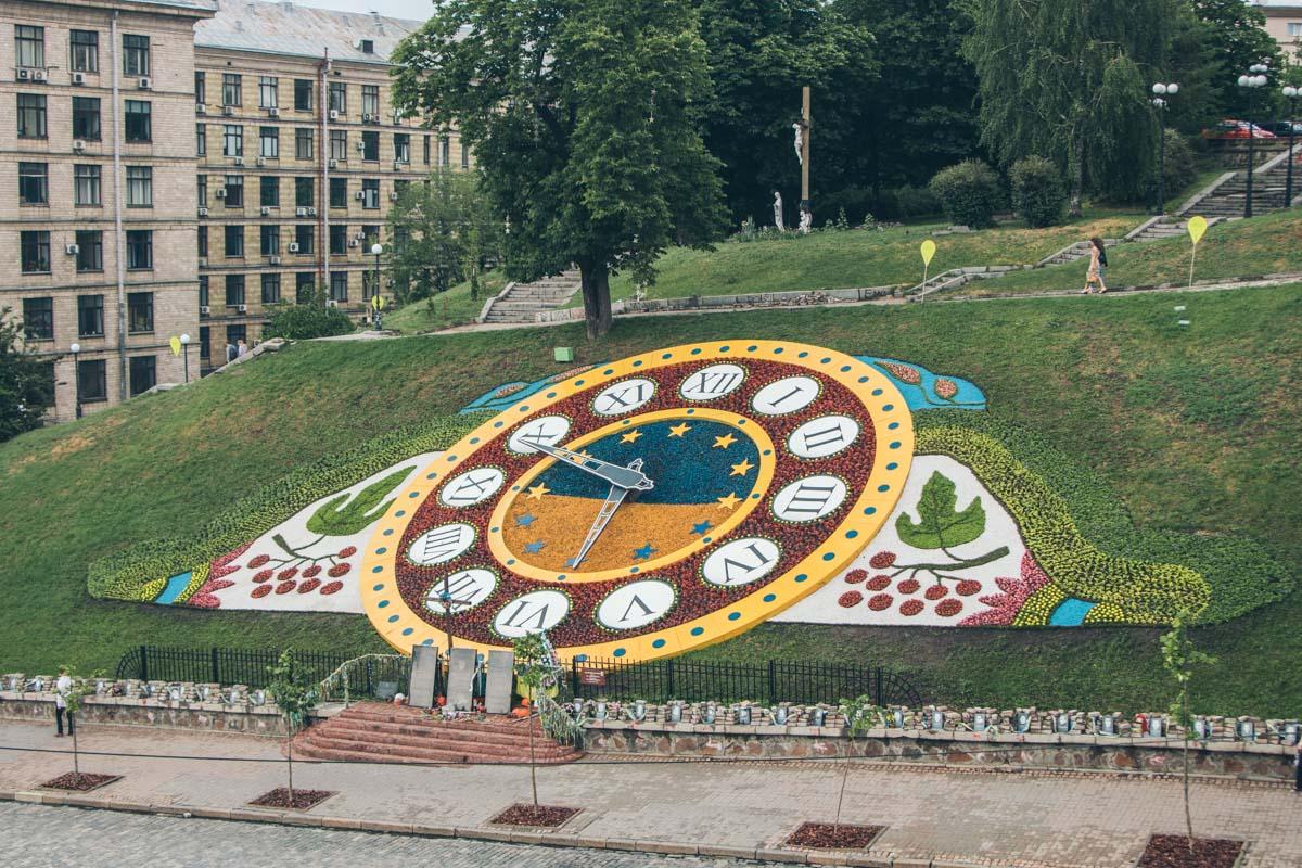 В общем для создания экспозиции высадили около 20 тысяч цветочной рассады