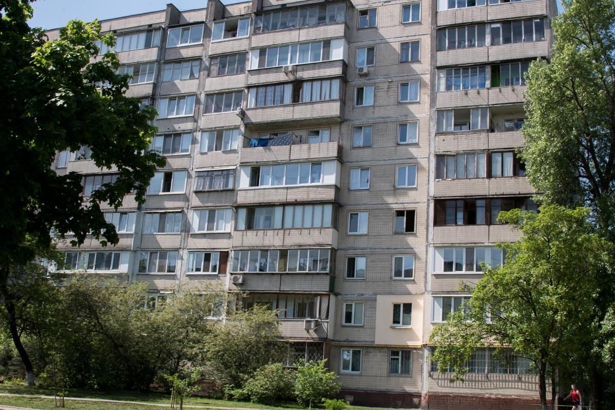 За последние 2 недели жильцы дома 1/2 на улице Митрополита Андрея Шептицкого нашли 6 кошачьих трупов