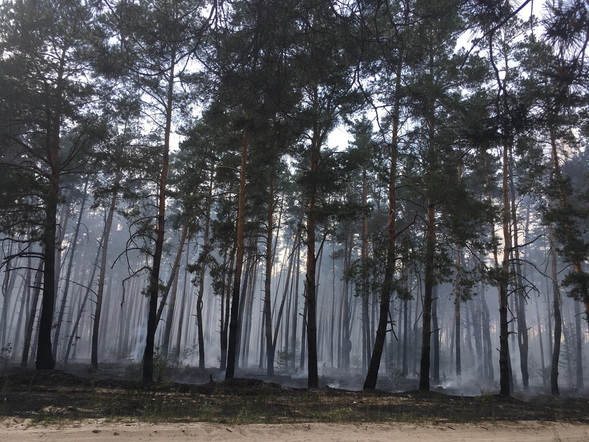 Пожарных вызвали в 14:18