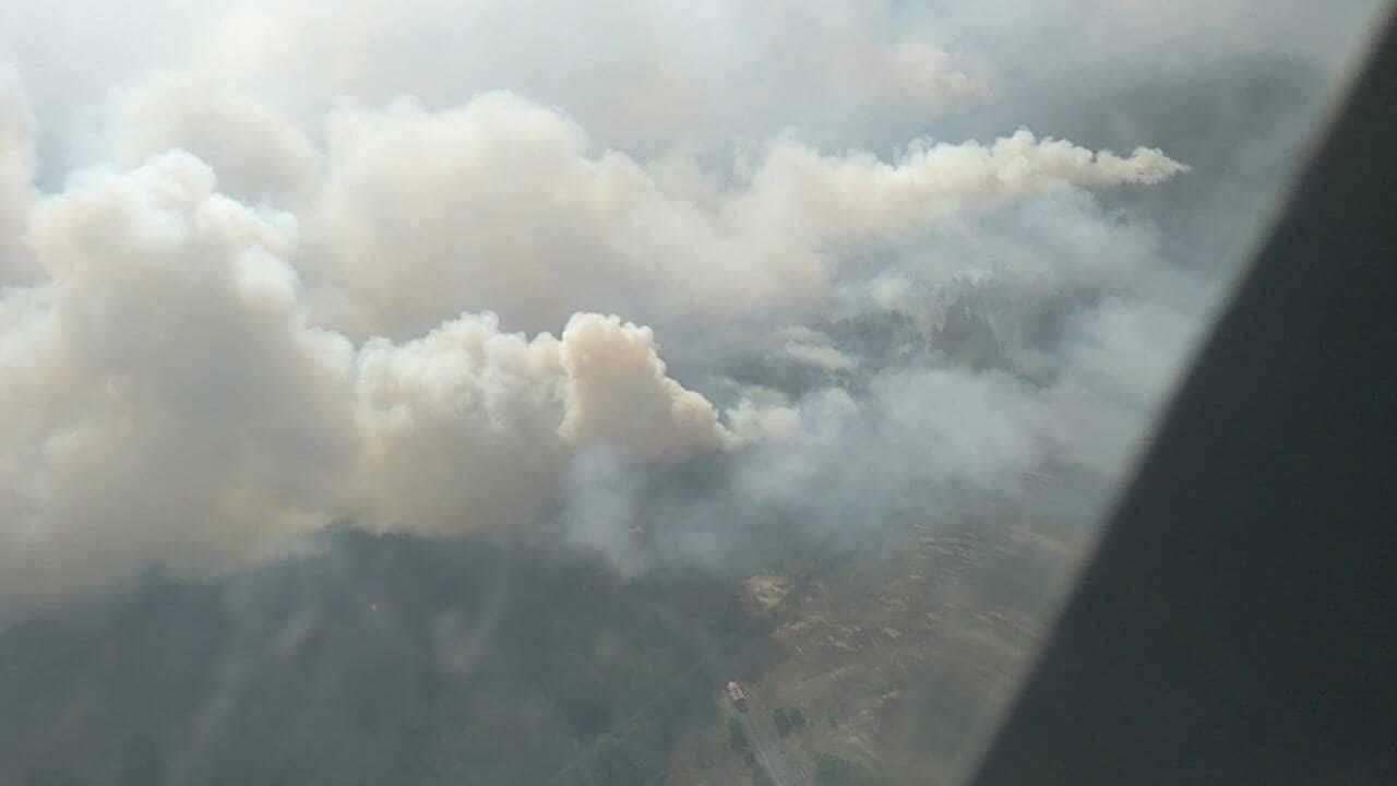 Площадь возгорания - 10 гектаров леса