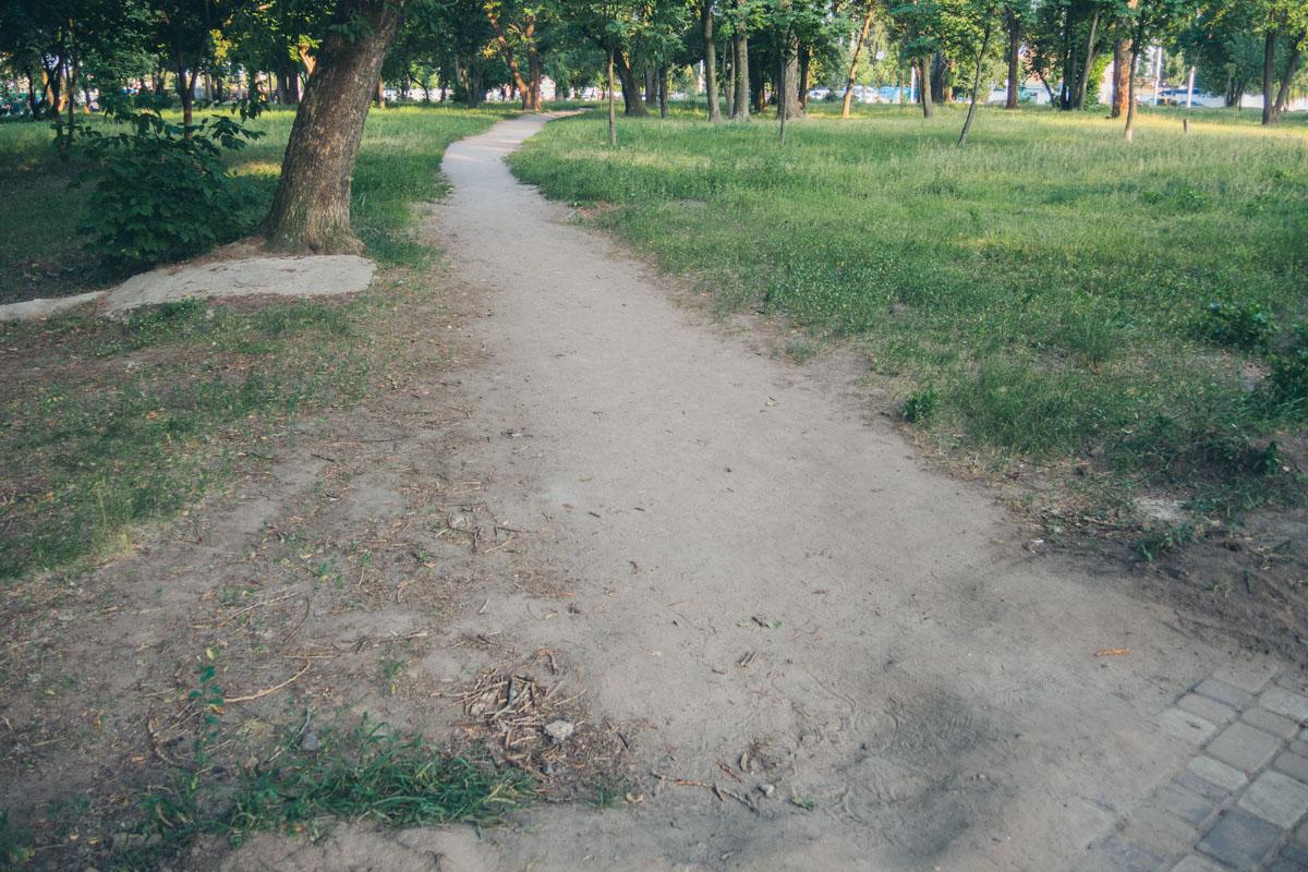 Дорожки нет, но маршрут, видимо, популярен