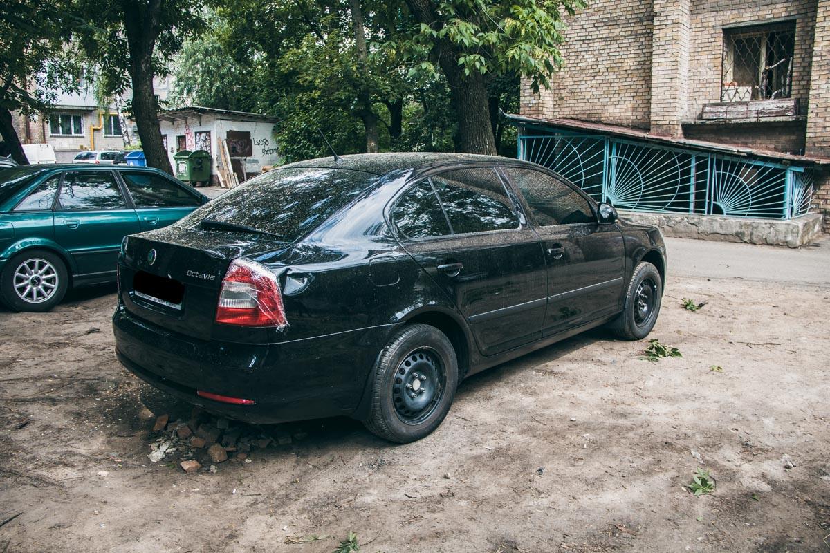 Владелец поврежденной машины рассказывает, что ветки с этого дерева обрушиваются на его авто уже второй раз