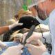 В Киевском зоопарке медведям полечили зубы