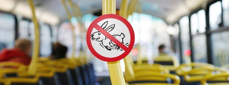 Отлов зайцев в общественном транспорте Киева: что делать, если вас поймали без билета