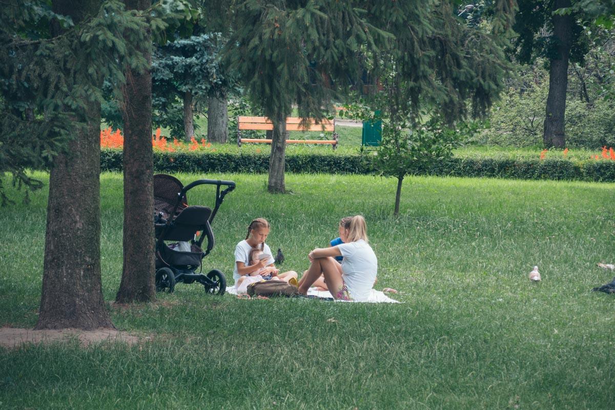 Можно даже устроить пикник в парке