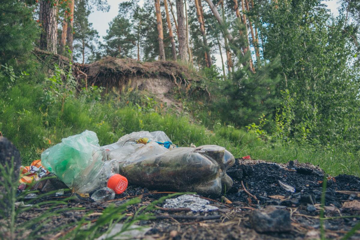 Но мусор есть как в озере, так и на территории зоны отдыха