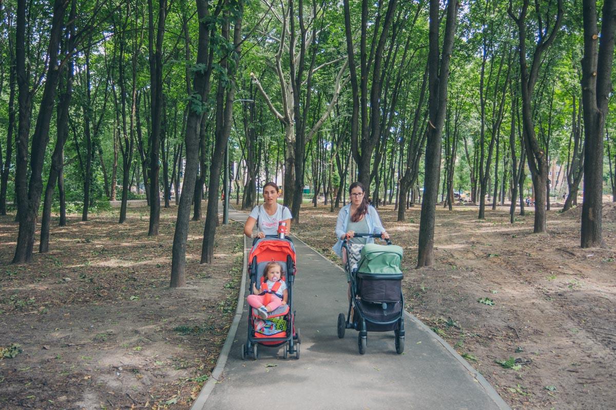 Летом гулять по таким зеленым зонам - одно удовольствие