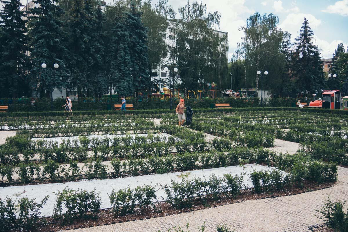 Весь парк зеленый и красивый