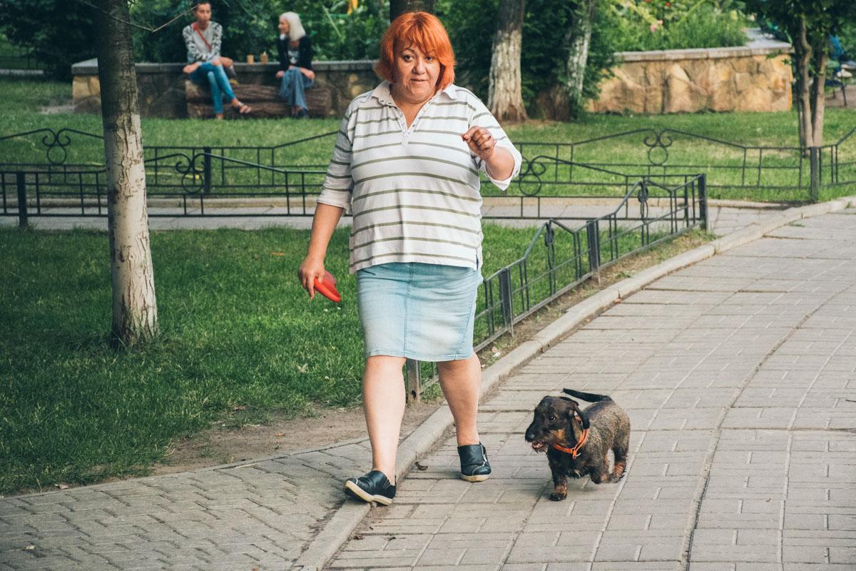 Как и владельцы собак, которые чаще бегают без поводка и могут схватить дохлую птицу