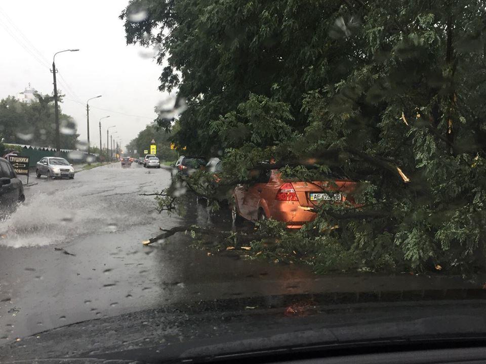 Дерево упало на авто на улице лагерная