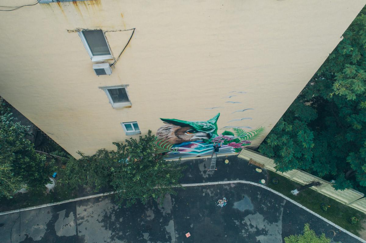 Мудрая сова поселилась в самом центре Киева