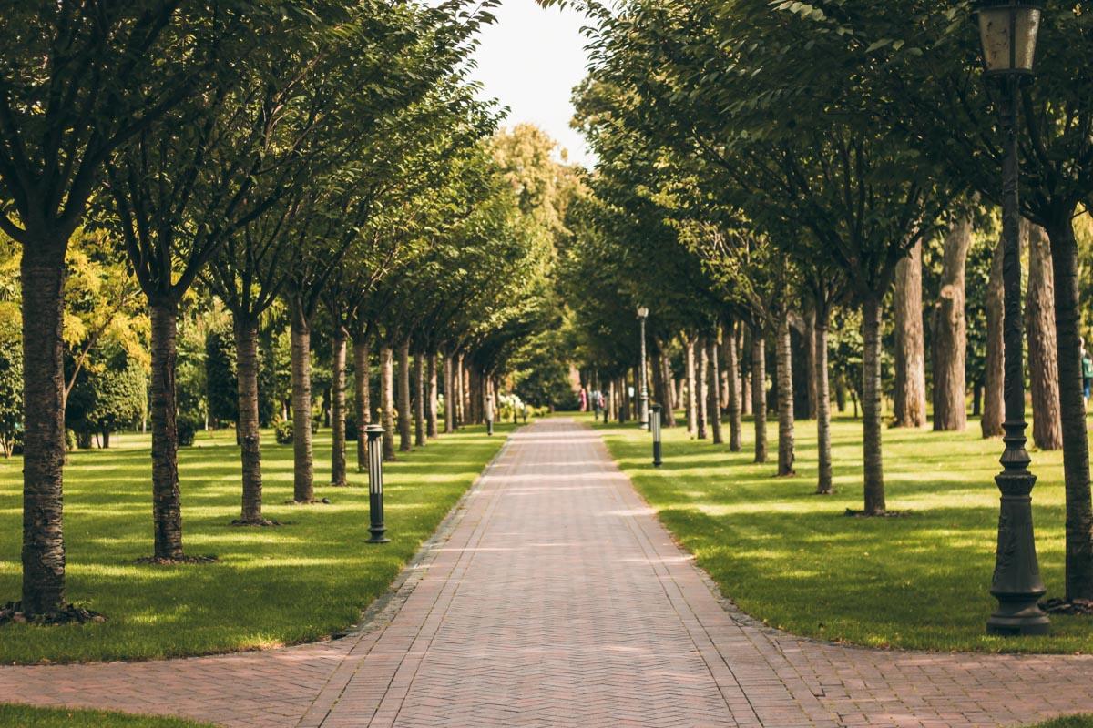 Райское местечко площадью в 140 гектаров радует изобилием флоры и фауны