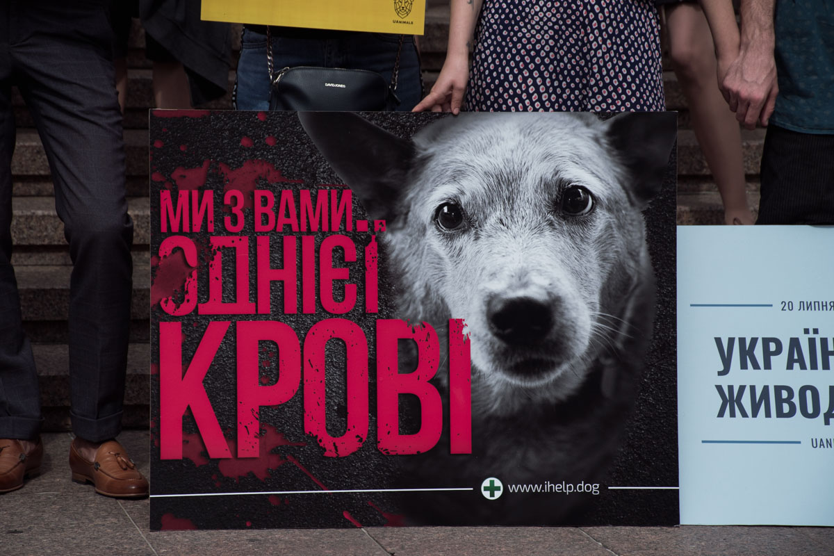 Участники акции собрали подписи под обращением к президенту Украины.