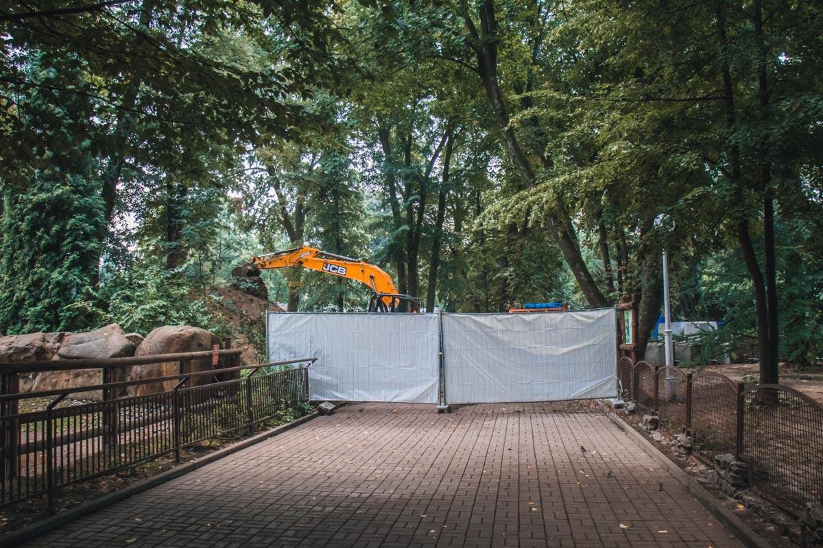 Осенью в зоопарке откроют комплекс, состоящий их трех озер