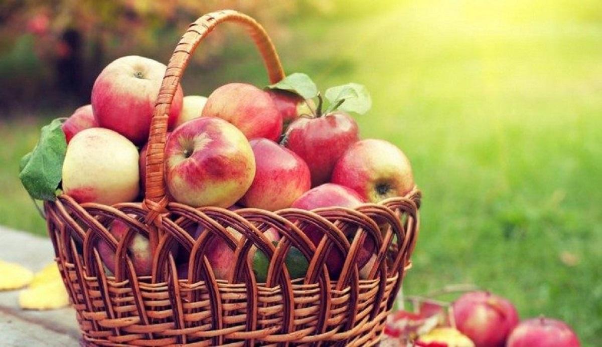 19 августа в Украине отмечают Яблочный спас