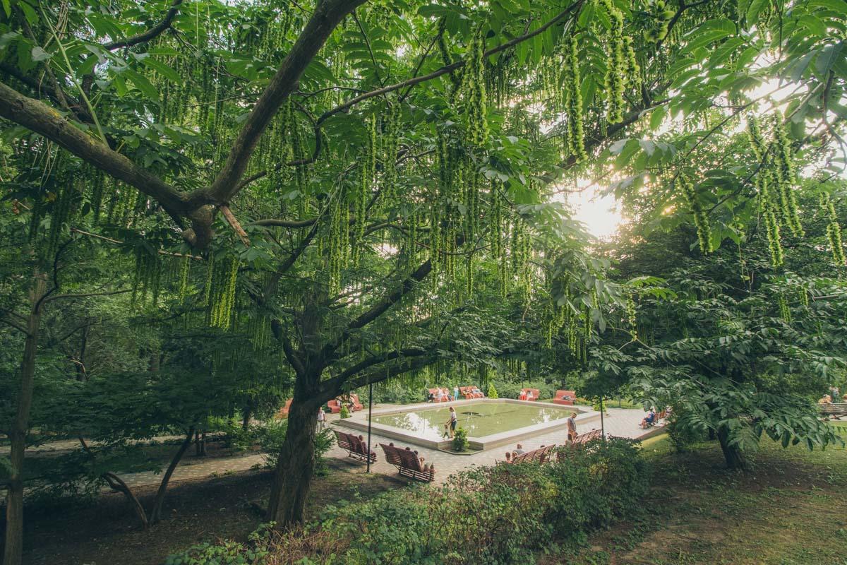 Территория сада разделена на парковую и научную зону