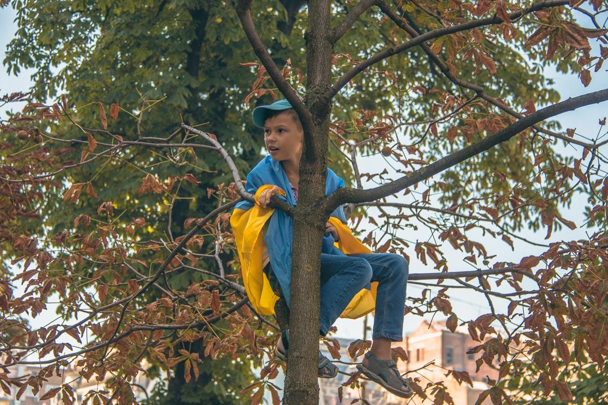Бесстрашный патриот на дереве