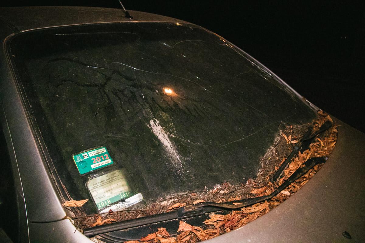 Сухая листва, прилипшая к капоту, свидетельствует о том, что машина стоит, минимум, с осени прошлого года
