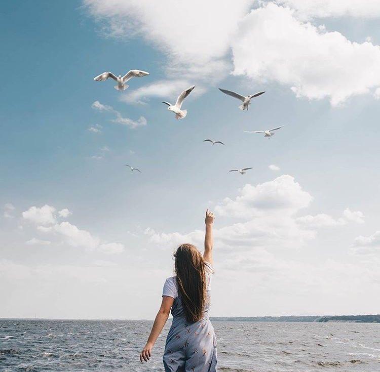 Интересно, что могут рассказать птицы? Фото @dima_yermolenko