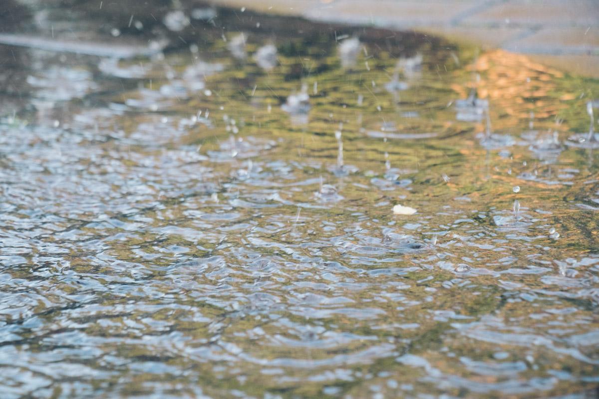 Ненавязчивый шум воды из фонтанчика легко успокоит ваши нервы и подарит ощущения спокойствия