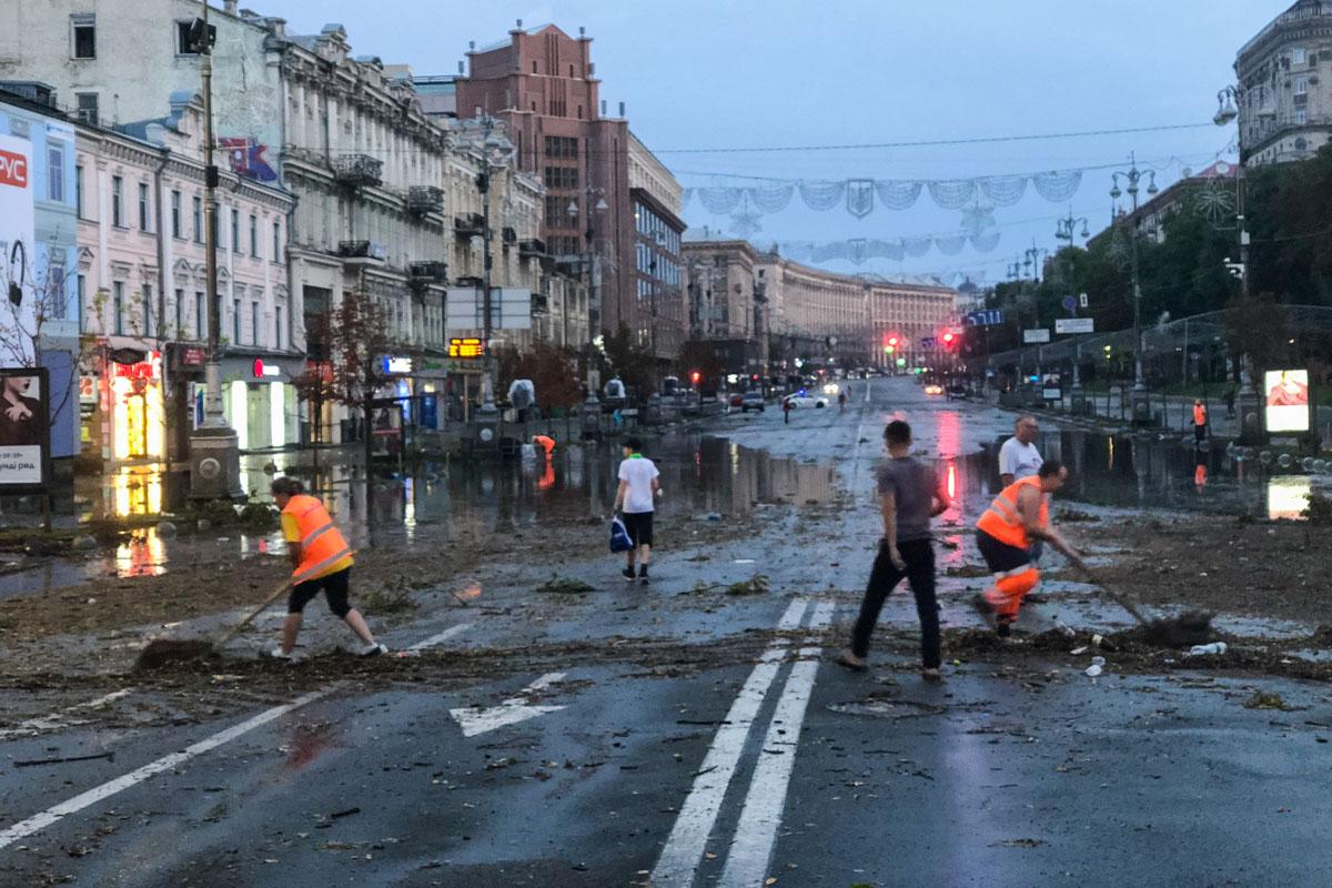 Стихия в центре города поломала каштаны, рекламные щиты и вывески
