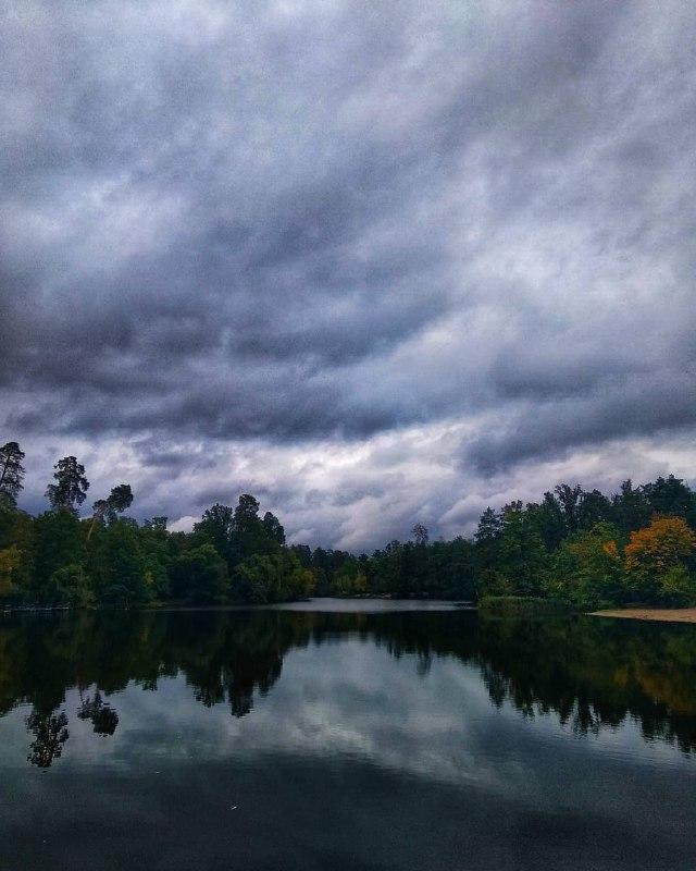 Нетронутая природа в Пуще-Водице. Фото: @v.r.p.o