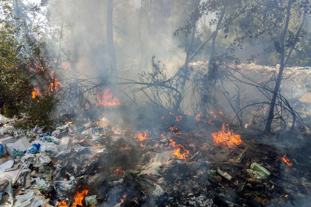 В лесопарковой зоне у залива реки Десенка загорелась мусорная свалка