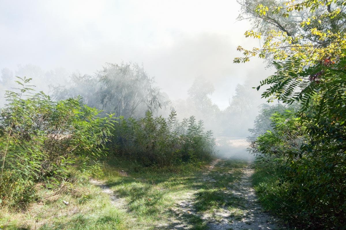 На данный момент пожарные тушат пламя
