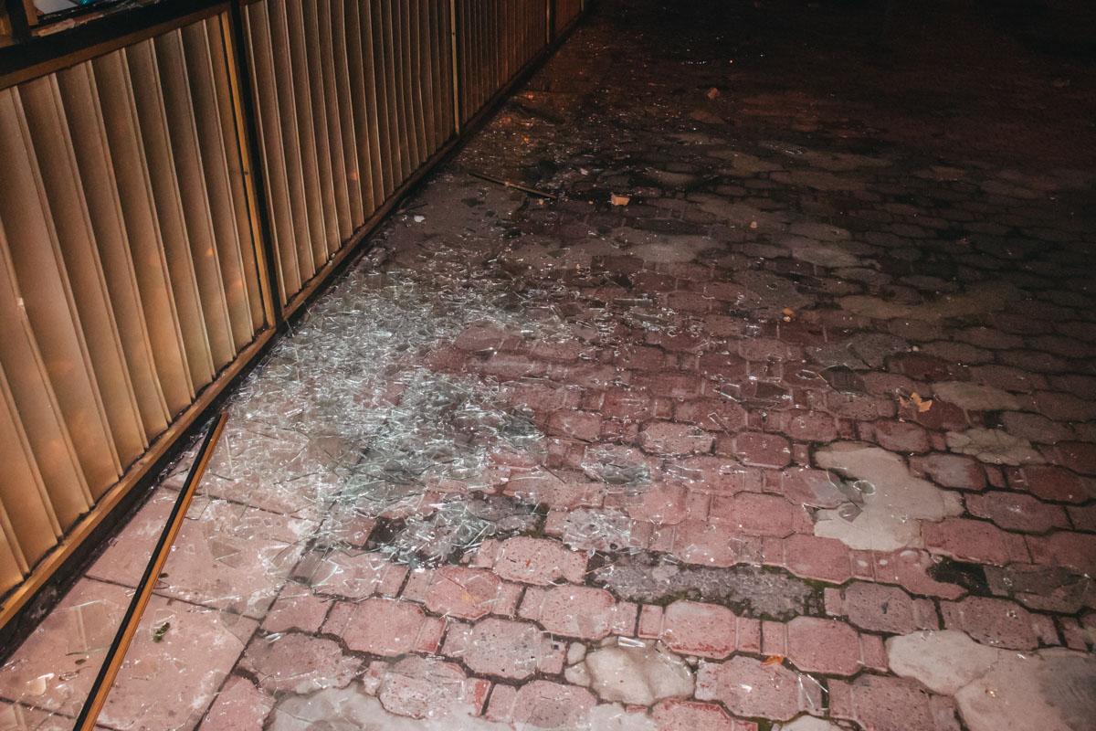 Неадекватный мужчина разгромил кафе на улице Васильковской и бросил внутрь заведения дымовую шашку