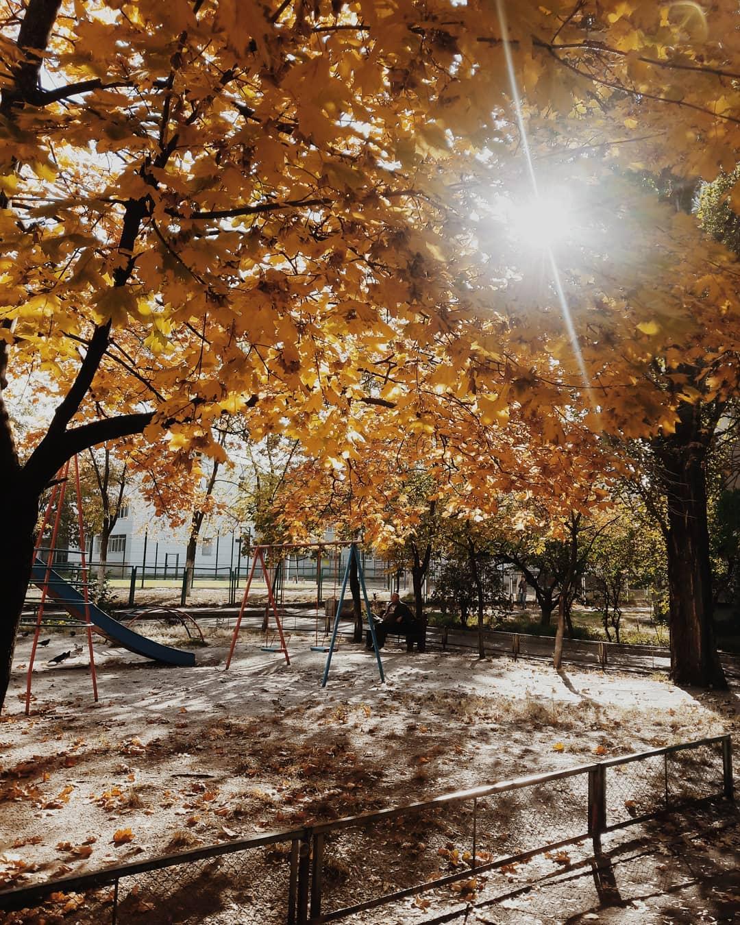 Осень превращает даже обычный двор в произведение искусства. Фото: @marishavladimirovna_