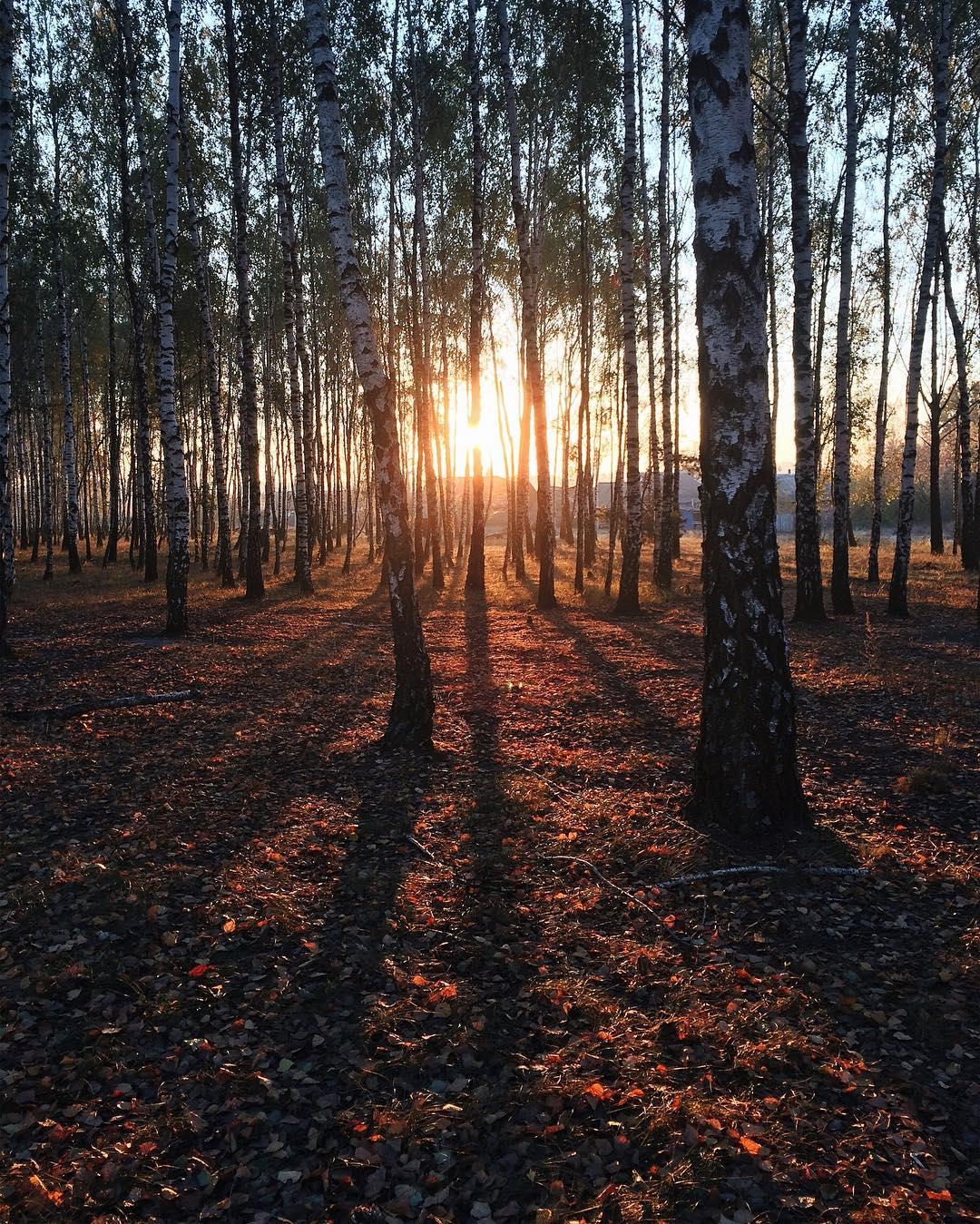 Рассвет нового дня. Фото: @nikicore
