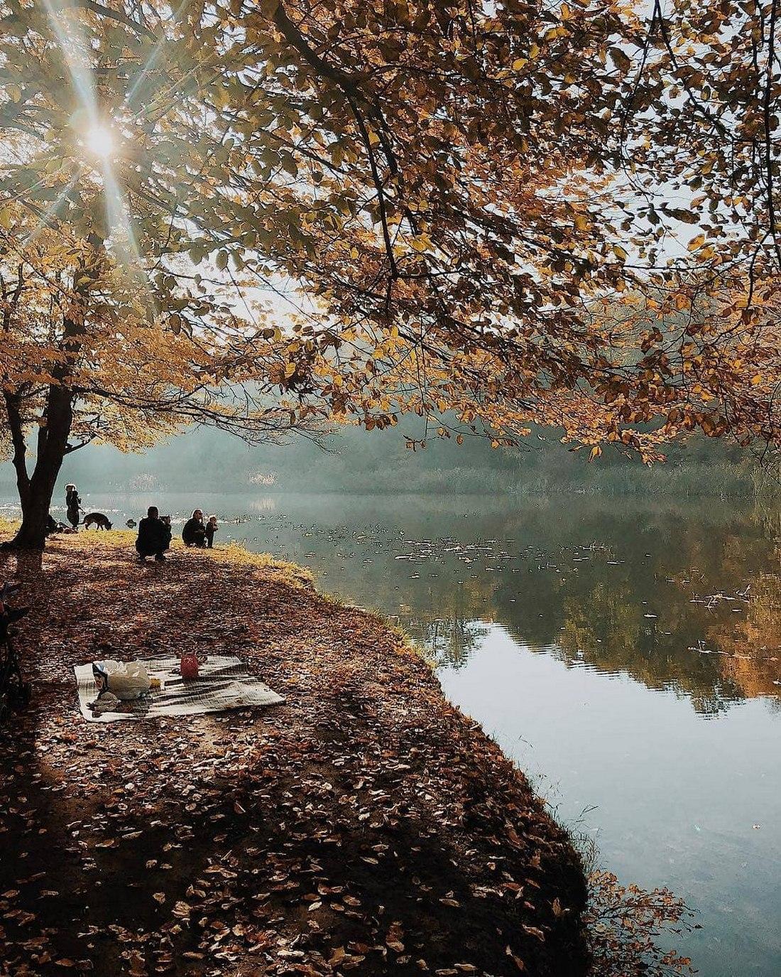 Последние теплые деньки в Голосеевском парке. Фото: @masha_nekrasova